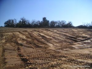 San Diego Backhoe Service Landscape Clearing